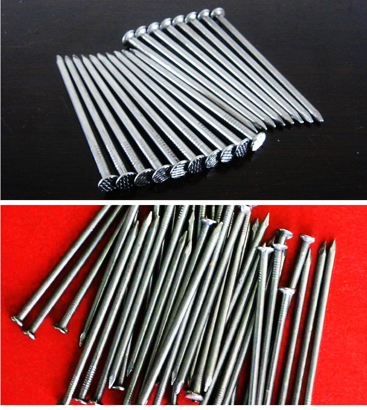 hot selling common nail iron nail factory