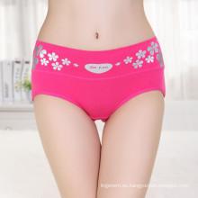 Señoras atractivas de la cintura media en las bragas que imprimen a mujeres micro bajo bragas las bragas de las mujeres de la manera