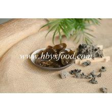 Champignon noir frais séché sauvage