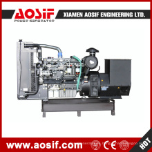 Principal fabricante y proveedor de generador eléctrico diesel