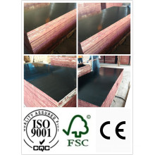 18mm Black Film Faced Plywood (HB100)