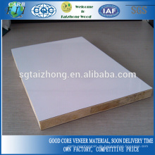 Möbel Grade 18mm Polyester Blockboard
