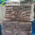Nova Chegada Tentáculo de Lula Indiana Seafrozen Para Churrasco Grelhado