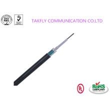 Câble à fibres optiques central à tube extérieur GYXTW