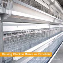 Equipo automático de granja de pollos para la capa de pollos de engorde