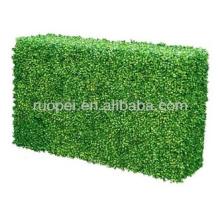 Cerca de folha de plástico hedge de buxo artificial