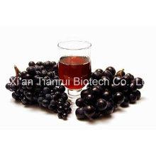 Jus de raisin Poudre / Poudre de raisin / Extrait de raisin Poudre / Concentré de raisin en poudre