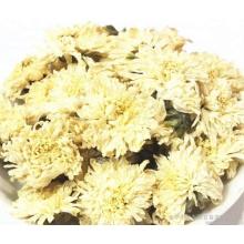 Chá de crisântemo amarelo orgânico