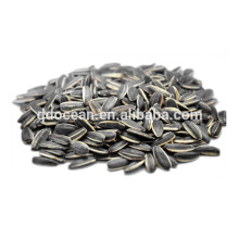 Wholesale Chinese sunflower seeds with competitive price