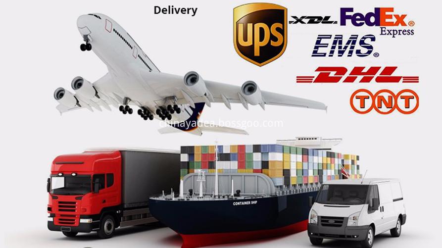 Shipping 4