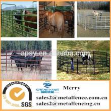metal tubular gado / vaca / trilhos de cerca de cavalo galvanized cattle cattle fence panel