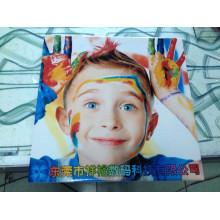 Ceramic Toner Photo Printer (Colorful 1225)