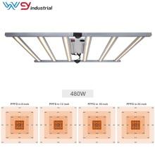 Wenyi Best Sunlight Bars 1000W Grow Lights