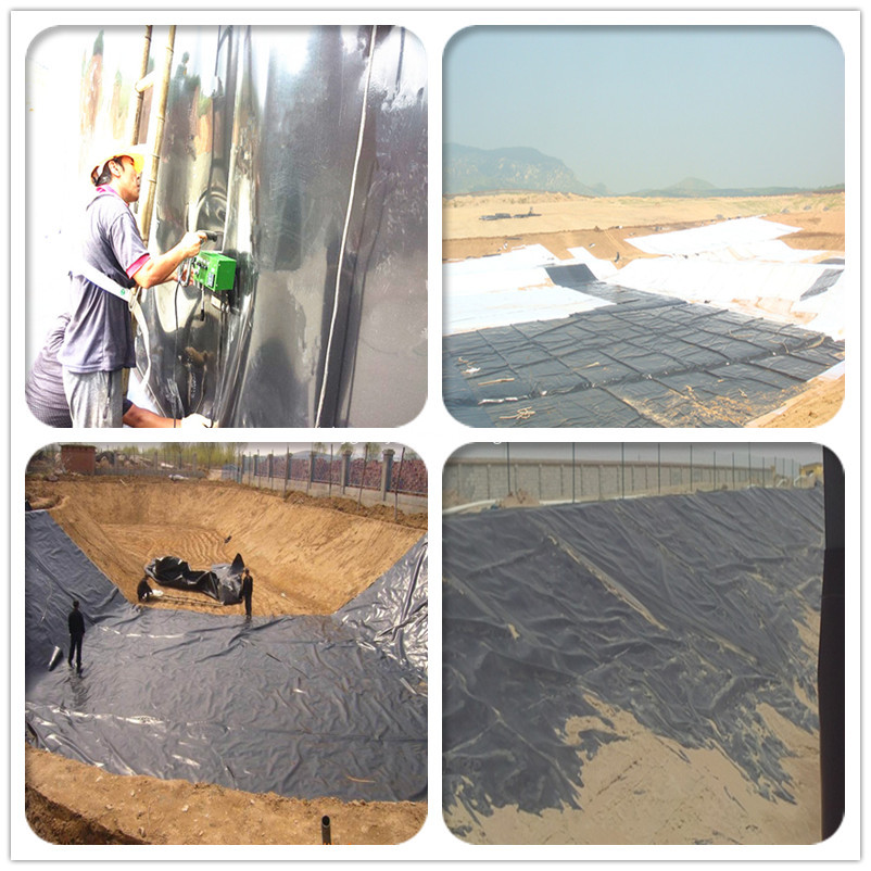 geomembrane used for fish pond