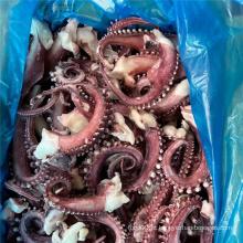 Tentáculo de lula escaldado para venda