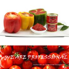 Pasta de tomate doble del concentrado para Dubai de Hebei Tomato Industry Co Ltd
