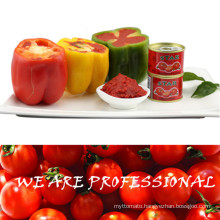Double Concentrate Tomato Paste for Dubai From Hebei Tomato Industry Co Ltd