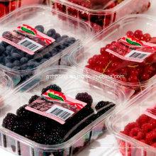 Plat en plastique jetable qui respecte l'environnement de nourriture pour la viande de fruit (plateau de pp)