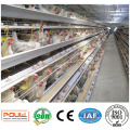 Livestock Machinery Battery Layer Cage House 128 Birds
