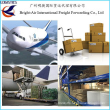 Dla Cheap Global Logistics Shipping Services Air Freigth Cost From China to Worldwide (Belgium)
