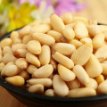 Pine Nut Pure Red Leveranciers