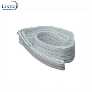Polyester Endless Web Sling Endless Webbing Sling