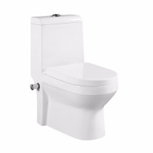 UK Hot Selling Sanitary Ware Back to Wall Toilet With Spray Nozzle