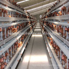 hot galvanized layer poultry cages layer cage