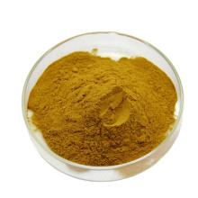 High Quality factory supply Usnic Acid Usnea Sodium powder usnic acid powder