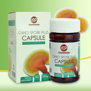 Wholesale Ganoderma Lucidum Reishi Lingzhi Herbal Capsule