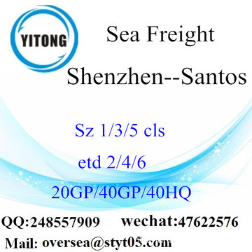 Shenzhen Port Sea Freight Shipping para Santos
