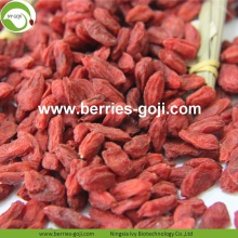 Factory Supply Natural Fruit Superfood Goji-bessen