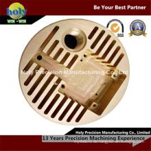 Kundenspezifisches CNC-Messing, das anodisiert / poliert / Bürsten usw. Bearbeitungskomponenten CNC