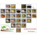 100% natur Rote Hefe Reispulver 5% Monacolin K, Lovastain