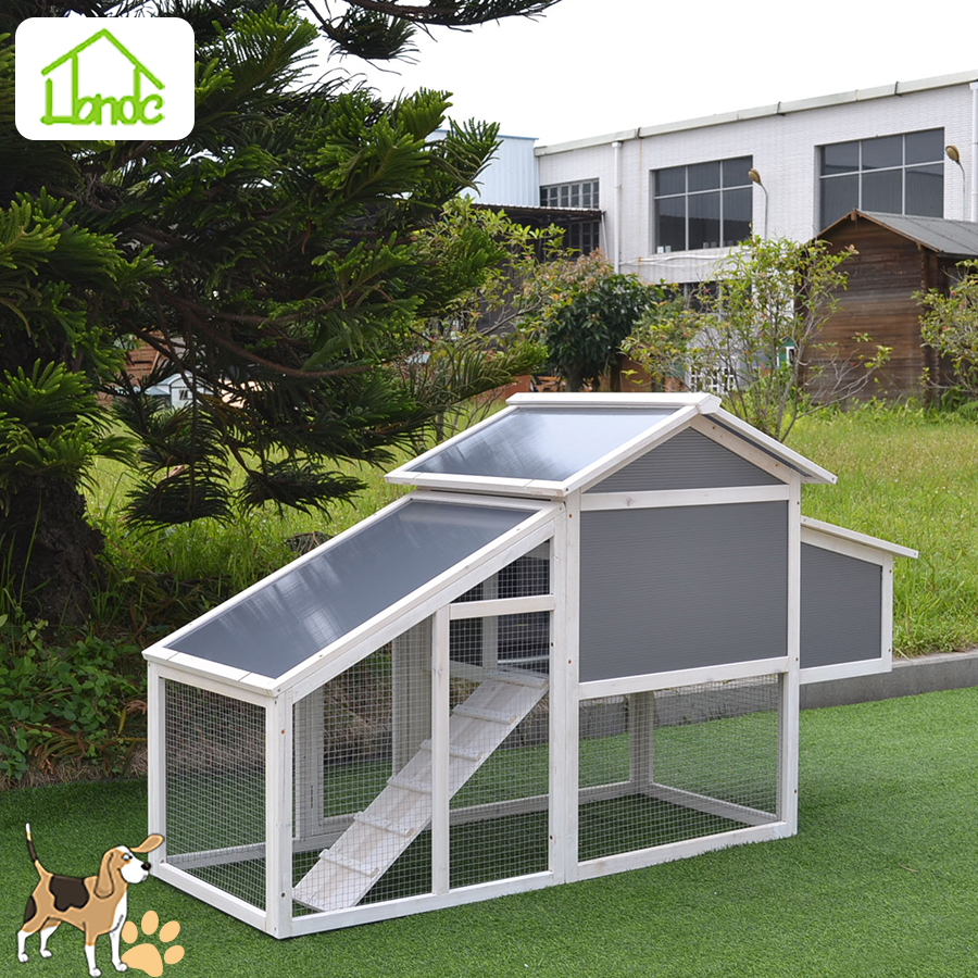 Outdoor wooden chicken coops and house with tray