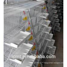 Spécialisé dans la production de cage d'alimentation automatique de cage de caille.