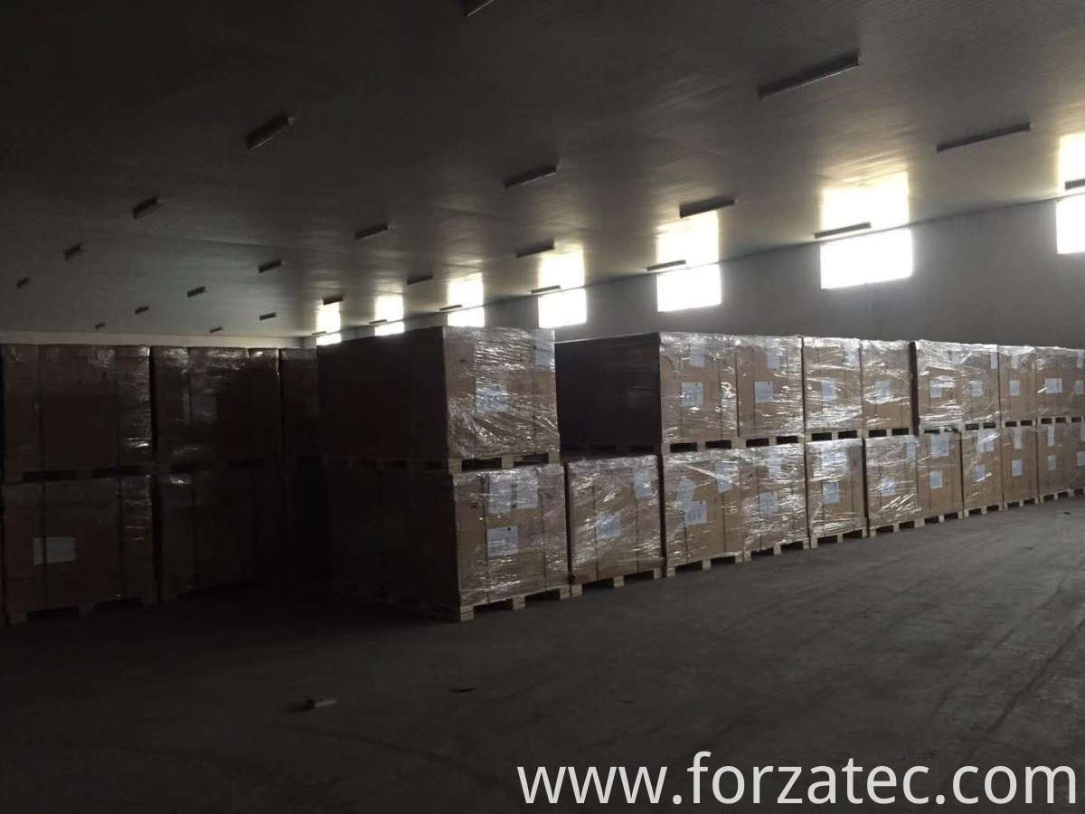 Solar Light Warehouse and Logistics