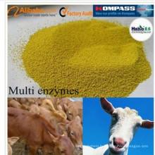 Habio Ruminant Supplément Multi Enzyme Spécialisé