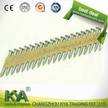 Galvanized Joist Hanger Nails for Construction and So on