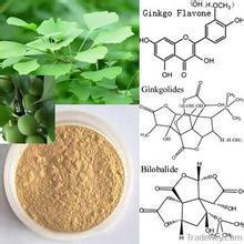 Ginkgo Biloba Extract Flavones 24% Lactones 6% Ginkgo Biloba Extract