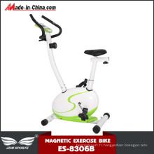 Vélo magnétique vertical de nouvelle marque Crossfit à vendre (ES-8306B)