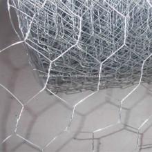 Treillis métallique hexagonal galvanisé