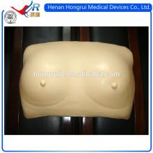 ISO realista modelo de autoexamen mamario