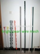 Plastic star post for electric fencing post