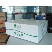 Packaging Box / Paper Boxes / Packing Box