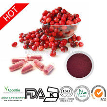 Natural Plant extracts Cranberry Extract 25% Proanthocyanidins/Anthocyanins, Cranberry capsule in bulk