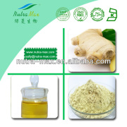 2014 China Manufacturer - Ginger Essential Oil Extract