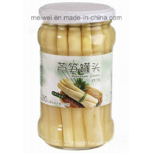 Health Food Canned White Asparagus with 314ml