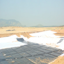 Revestimiento de HDPE 30mils / revestimiento de estanque para el cultivo de camarón