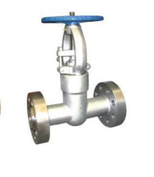 Forged steel gate valves 2 Inch